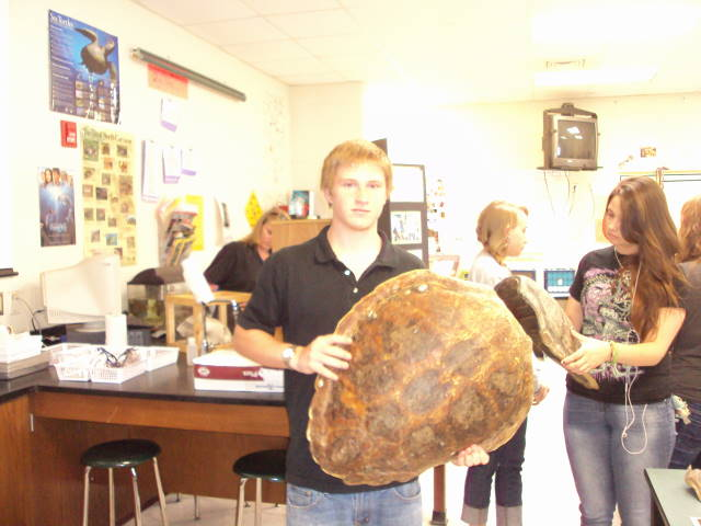 Sea Turtle Education by Carmel at West Brunswick HS